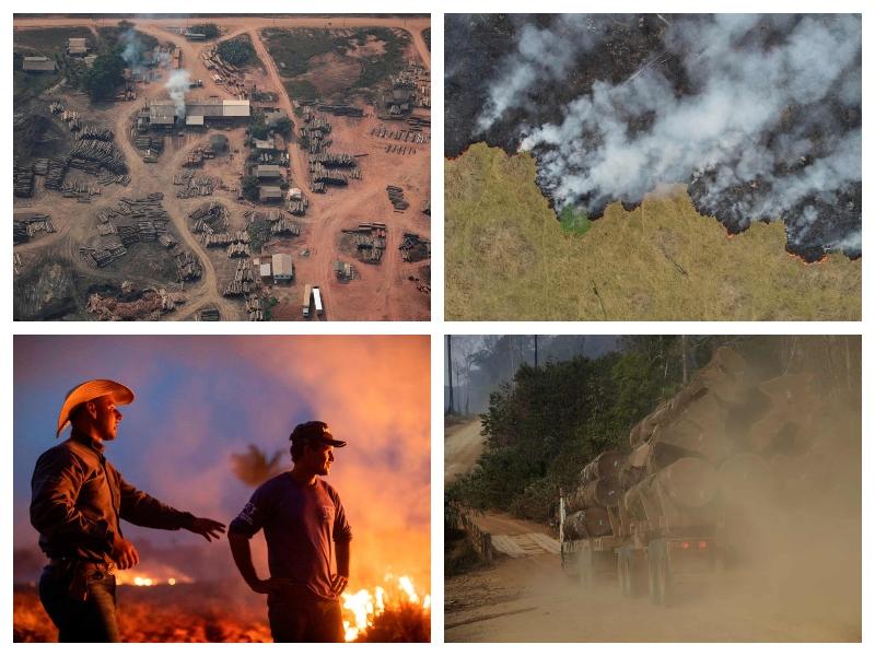 Amazonski pragozd - ogenj