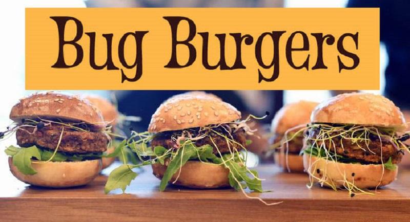 Bug Burgerji