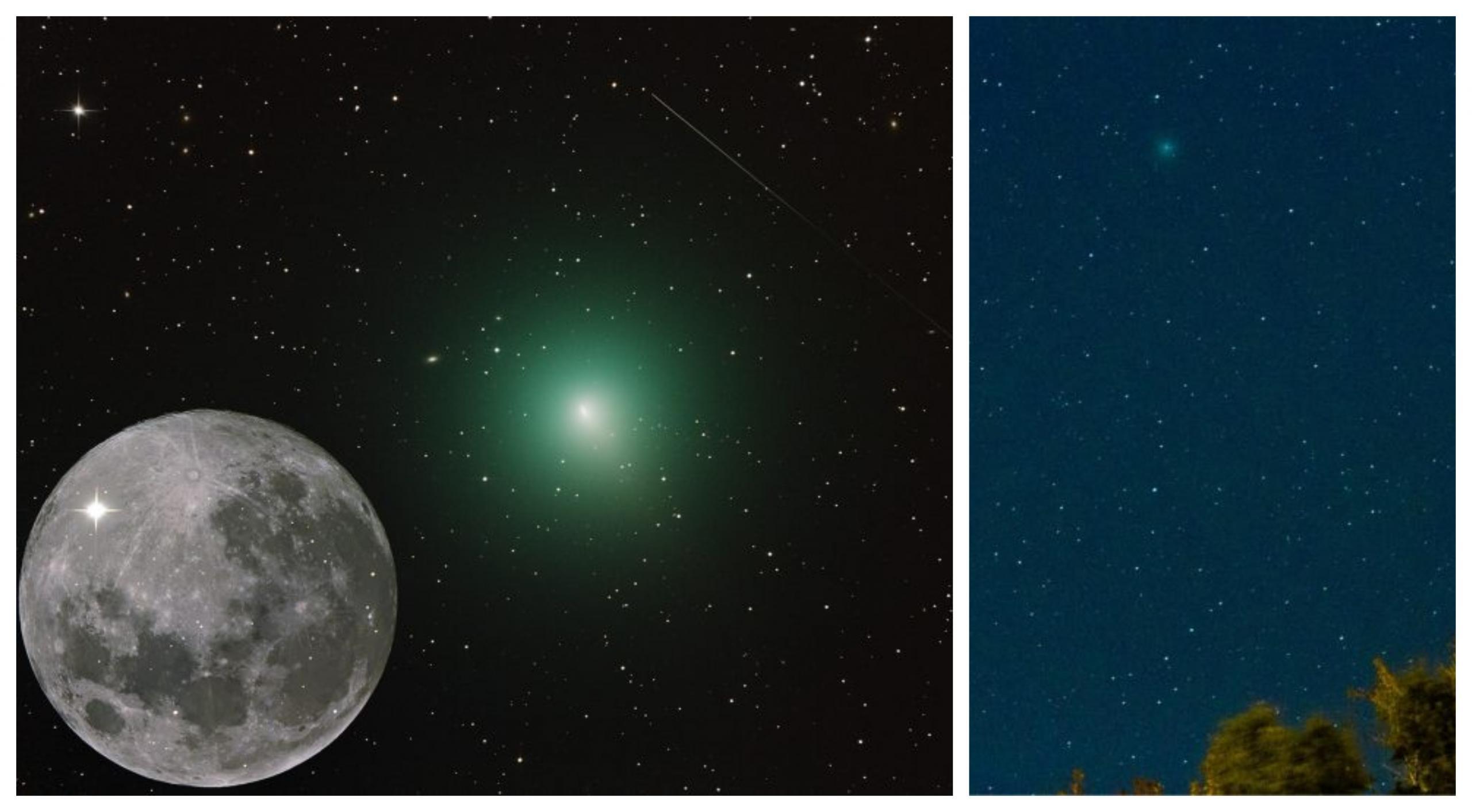 Letošnji najsvetlejši komet