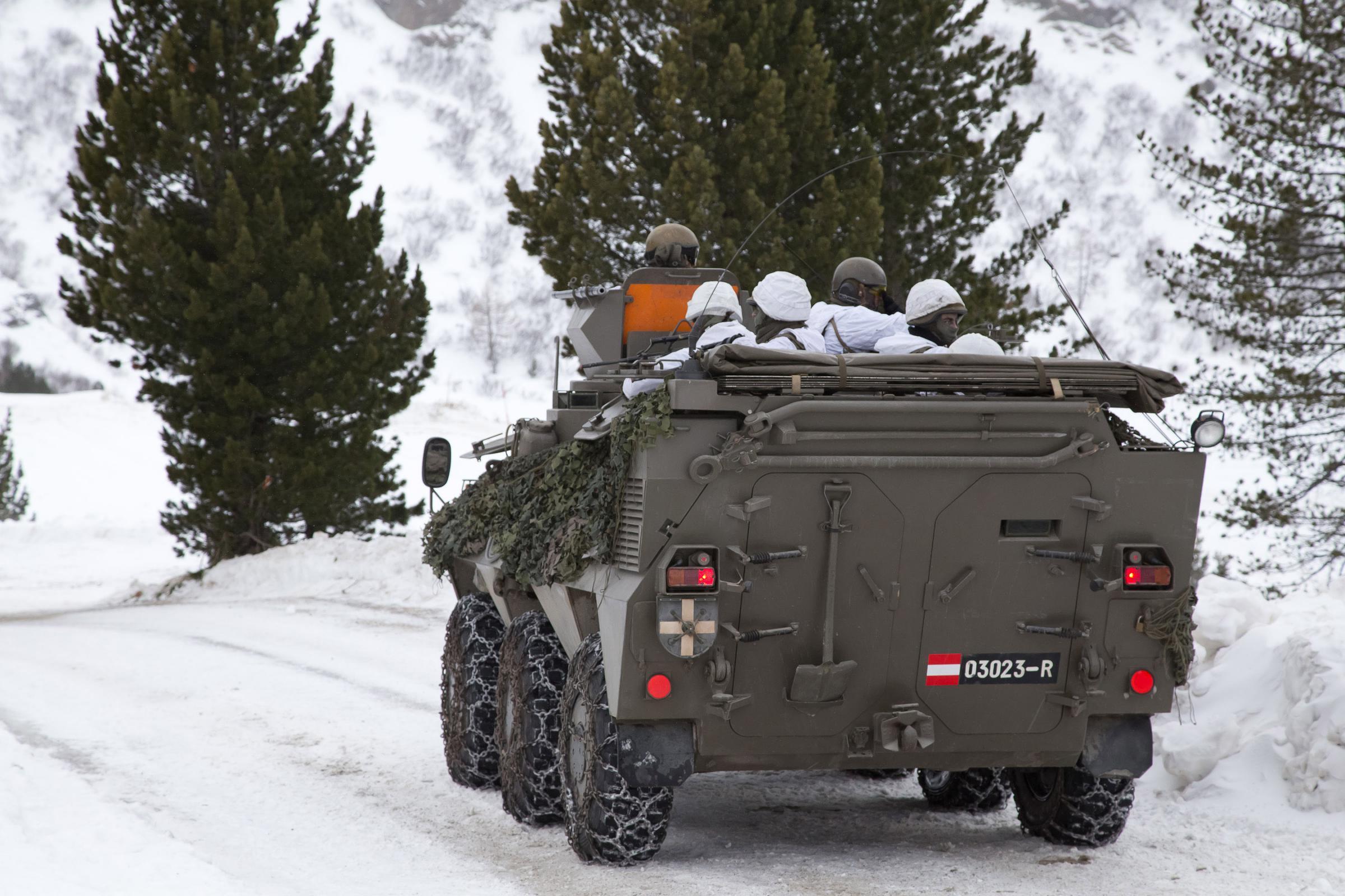 Pandur in avstrijska vojska