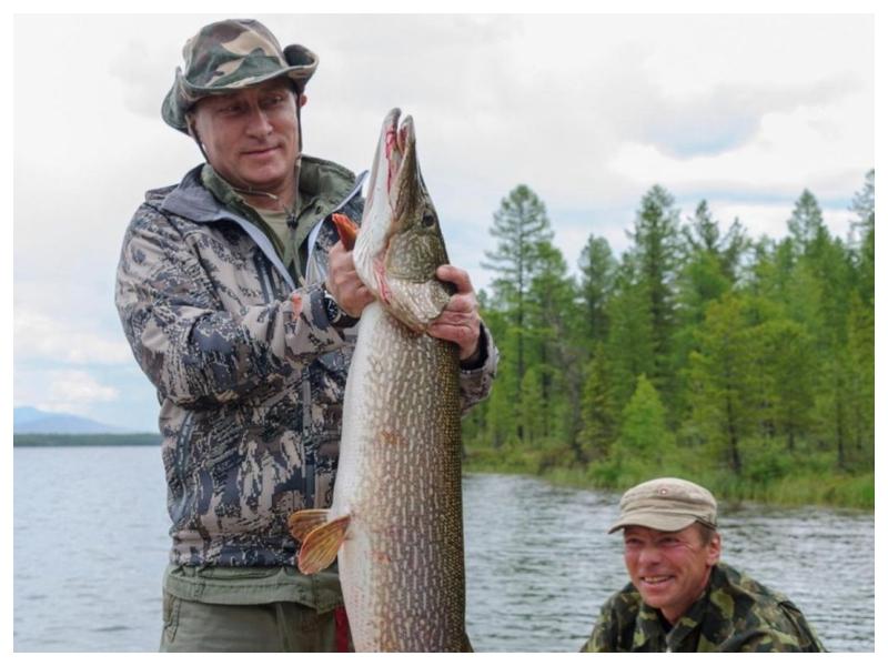 Putin- ribič
