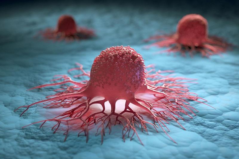 Celice raka