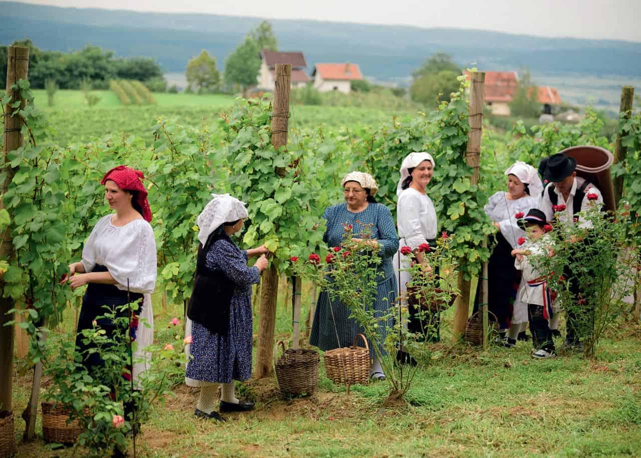 Slavonija, ženske v nošnji vir:YachtsCroatia