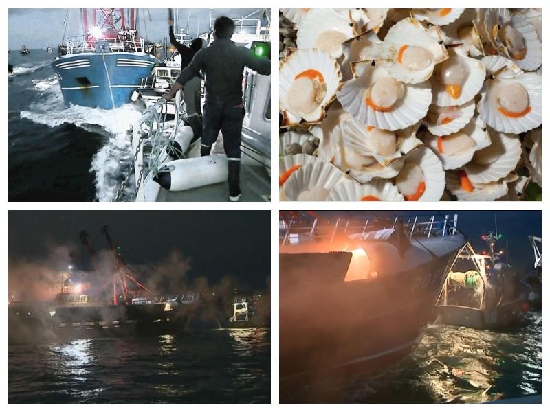 Ribiška vojna za pokrovače
