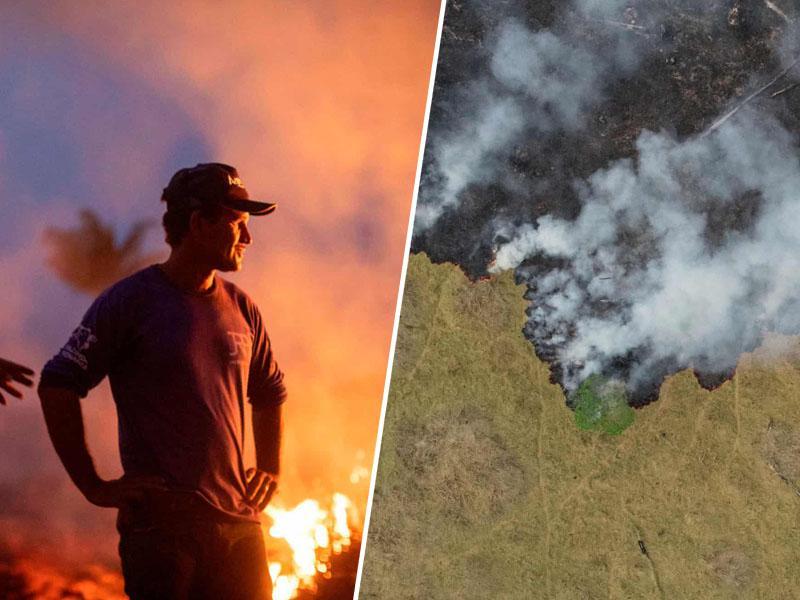 Svetovna histerija: kritike Bolsanara upravičene, da v Amazoniji gorijo »pljuča sveta« pa je - »lažna novica«