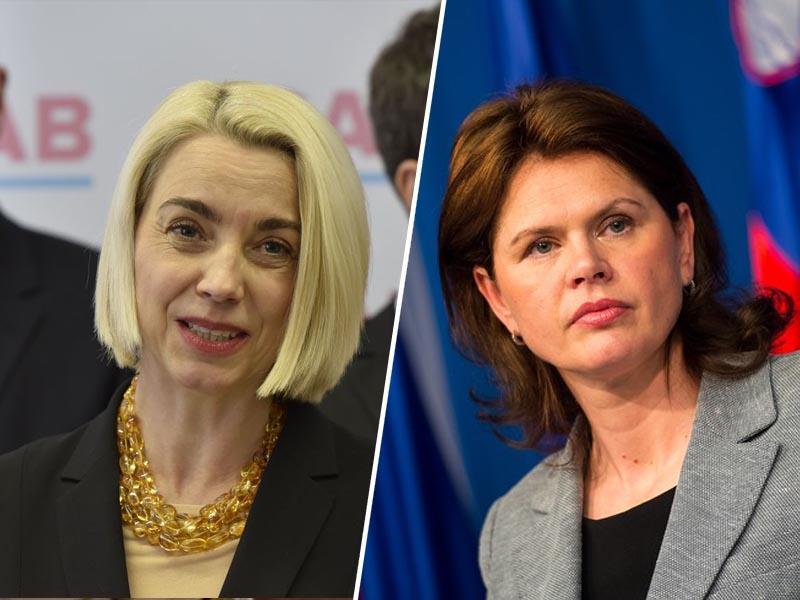 Gorenc: »Zakaj jo nadzor na meji začne motiti šele, ko se odloči za kandidaturo v Sloveniji?«