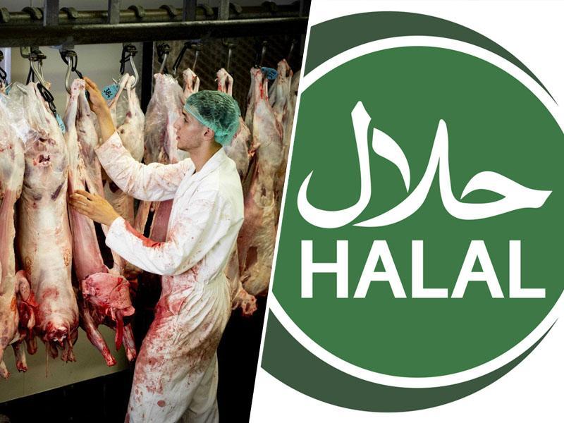 »Halal« in »košer« proizvodi v Evropi in Sloveniji: normalizacija krutosti ali verska pravica?
