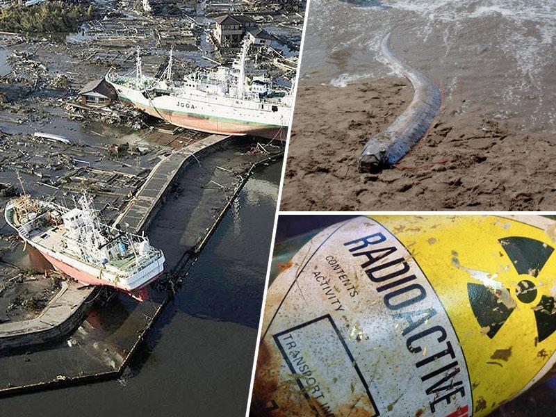 Panika na Japonskem: na obalo naplavilo bitje, ki »napoveduje« veliko katastrofo