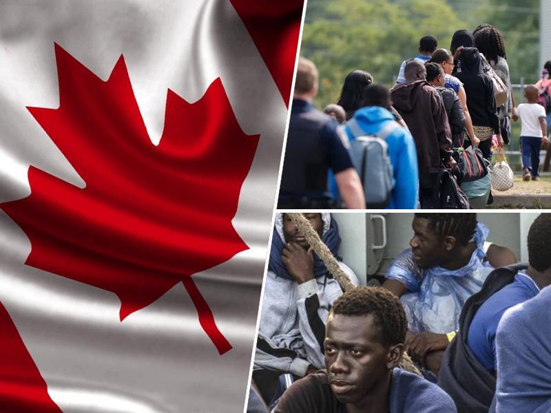 Migranti dobrodošli: Kanada jih v naslednjih treh letih potrebuje več kot milijon
