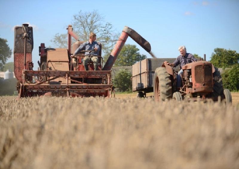 Klavrn pridelek pšenice, kmetje ogorčeni nad ceno