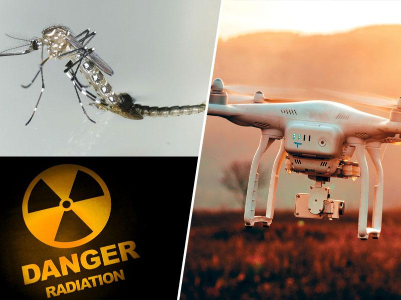 Znanstven preboj: Droni in jedrsko sevanje uspešni v boju proti nadležnim komarjem