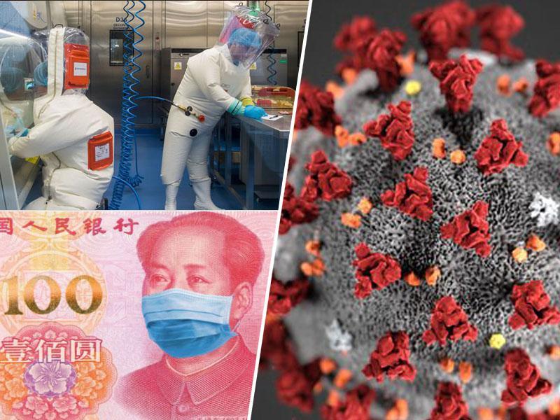Pogumni kitajski znanstveniki razkrili: virus je najverjetneje ušel iz raziskovalnega laboratorija