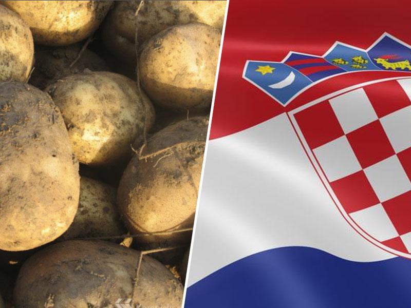 Na Hrvaškem bodo kot »intelektualno lastnino« zaščitili krompir – kot trgovsko znamko »Međimurski kalemper«