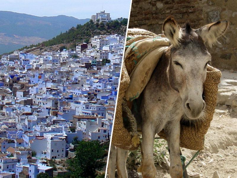 Maroko – insajderski potovalni namigi