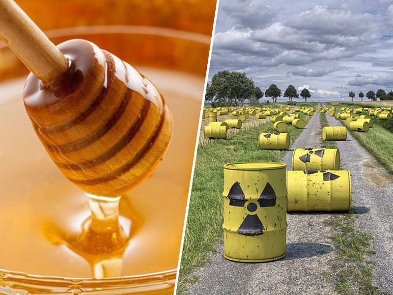 Dan Zemlje: Med še vedno vsebuje radioaktivne sledove jedrskih bomb, sproženih pred pol stoletja