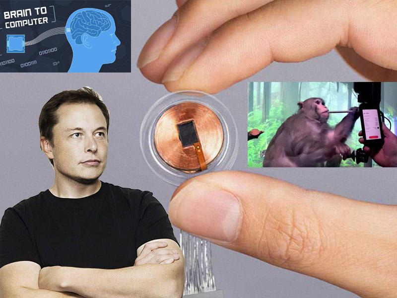 Muskova težava: Neuralink, ki razvija vsadke za nadzor misli, zapustil njegov soustanovitelj in glavni raziskovalec