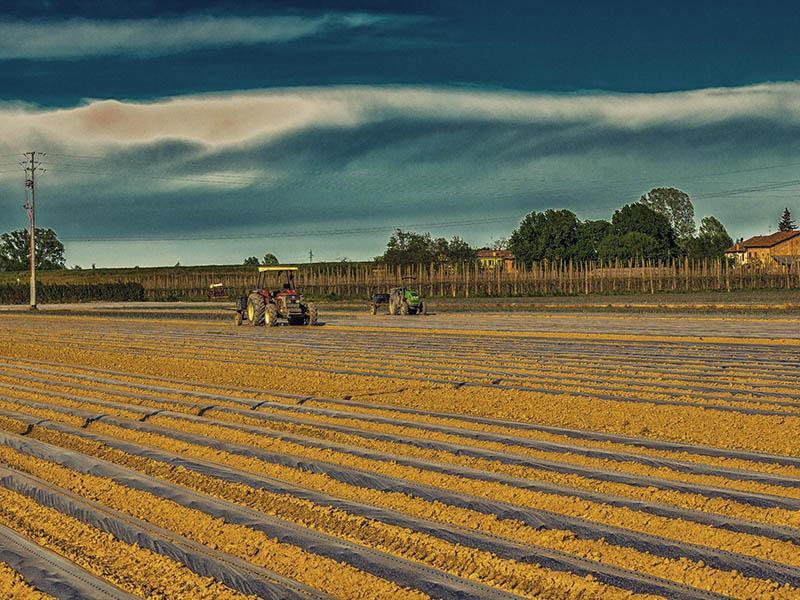 Zaradi klimatskih sprememb nujna prilagoditev kmetijske proizvodnje