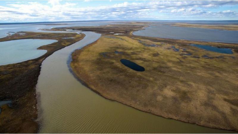 Okoljska katastrofa v arktičnem delu Rusije, Putin pobesnel zaradi počasne odzivnosti