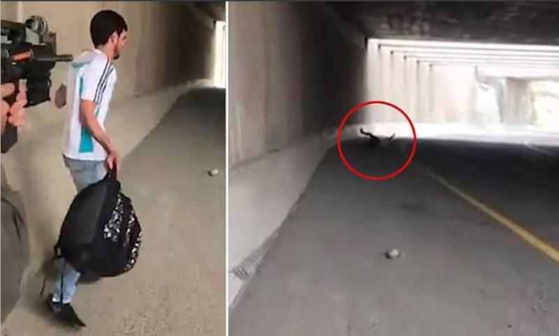 »Zgini!« Kamere ujele izraelsko policistko, ko je ustrelila mladega Palestinca v hrbet iz »čiste zabave«