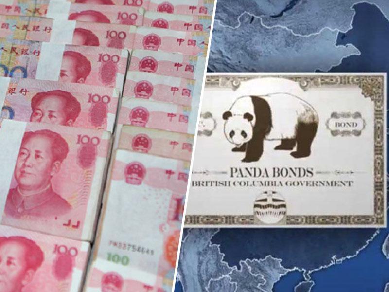 Prehitevajo Slovenijo: Portugalska prva evrska država z obveznicami v juanih, kmalu ji bo sledila tudi Avstrija