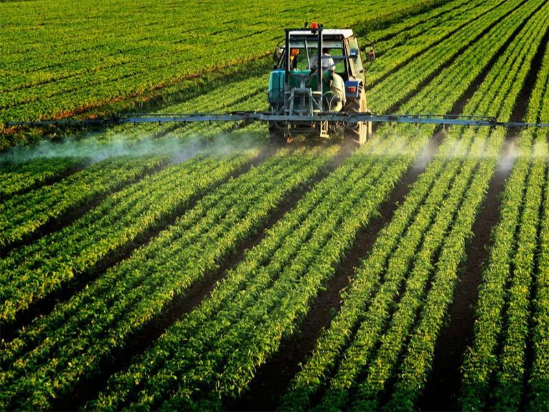 Ameriško sodišče obtožilo vlado kršenja okoljske zakonodaje