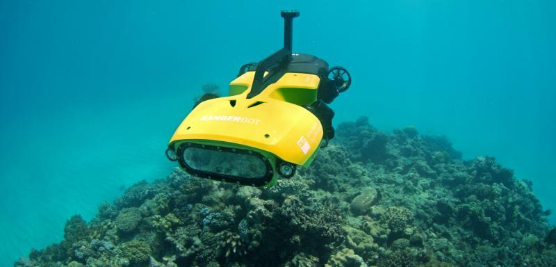 Avstralija za zaščito Velikega koralnega grebena razvila robota-ubijalca morskih zvezd
