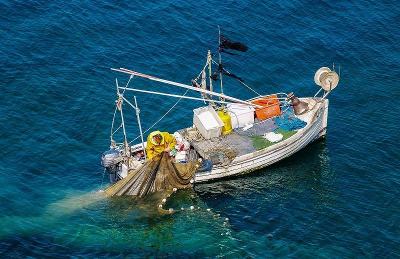 Za področje ribištva na voljo devet milijonov evrov spodbud