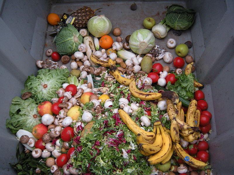 Češka trgovcem prepovedala odmetavanje hrane