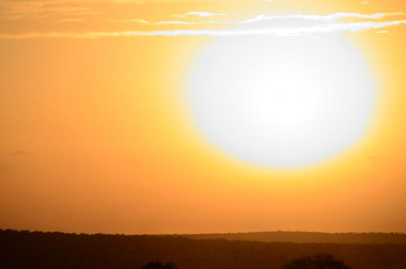 Temperature v maju nad dolgoletnim povprečjem; še kdo dvomi o globalnem segrevanju?!