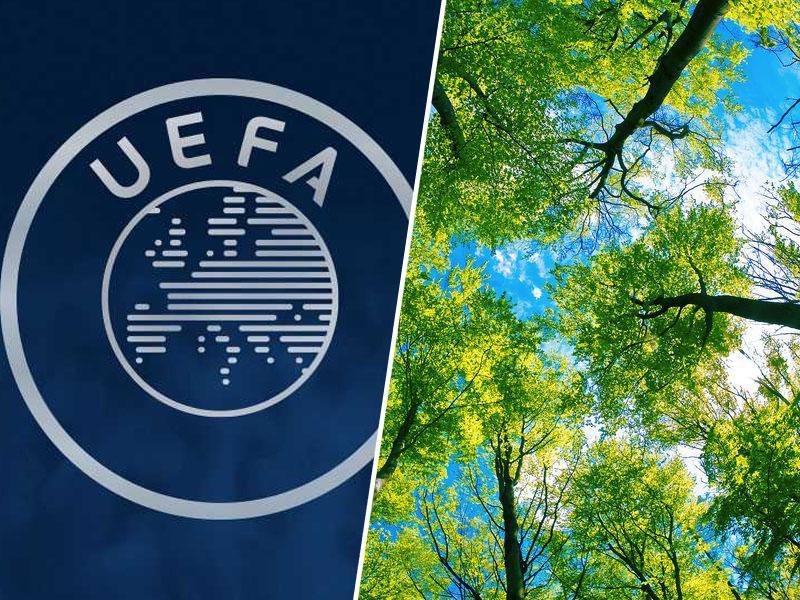 Uefa in trajnost: 50.000 dreves za zmanjšanje ogljikovih emisij