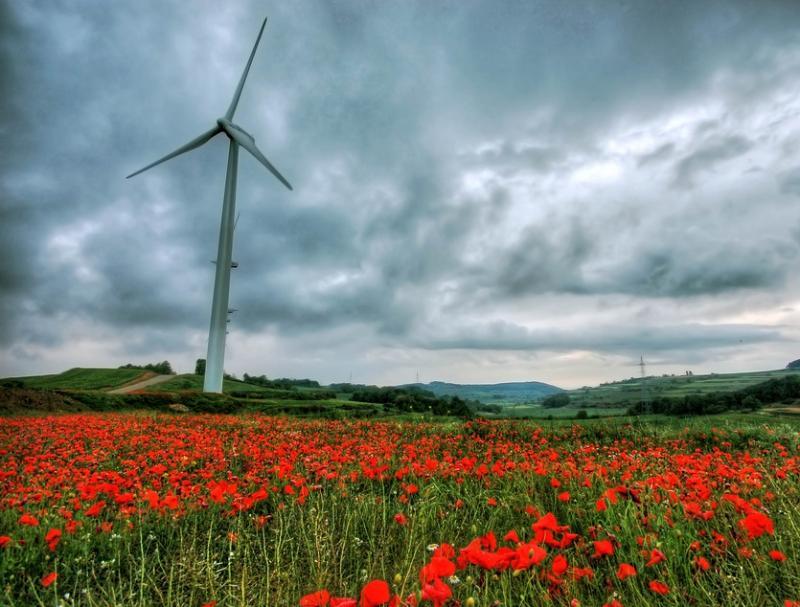 Za podporo proizvodnji elektrike iz obnovljivih virov na voljo 10 milijonov evrov