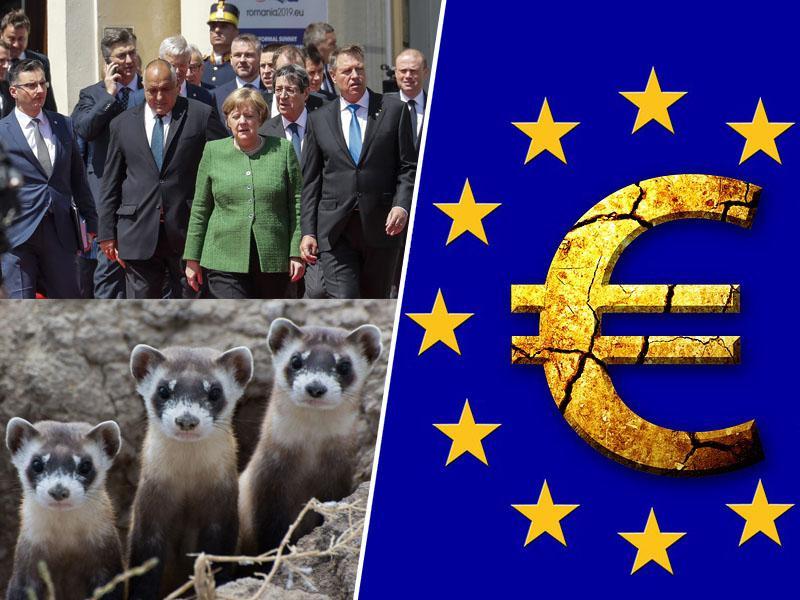 EU po odhodu Velike Britanije »flika« finančno luknjo, diplomati pa priznavajo: »Tepemo se kot dihurji v vreči!«