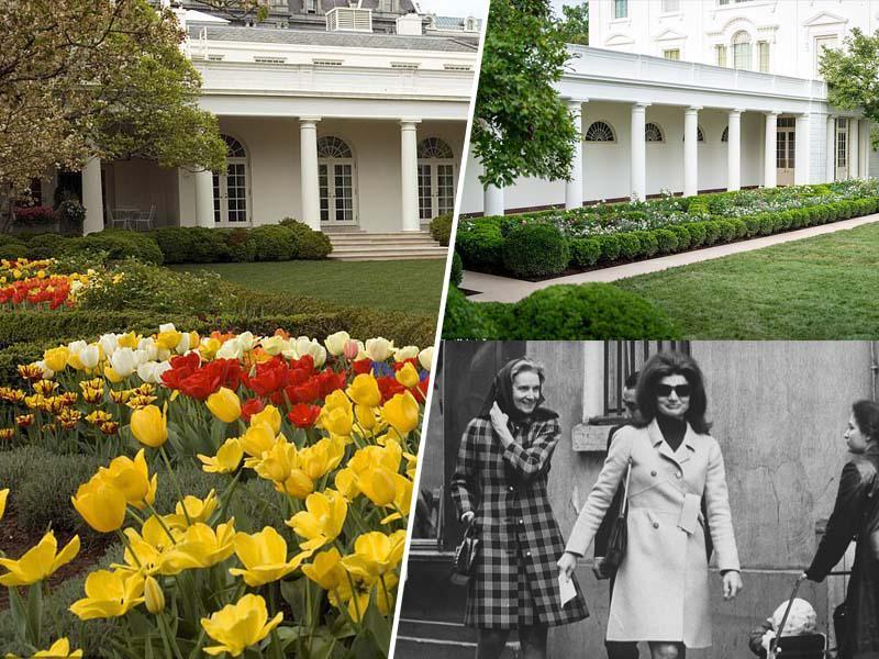 Melania renovirala in v Beli hiši »uničila« slavni Rose Garden, ki ga je oblikovala Jackie Kennedy