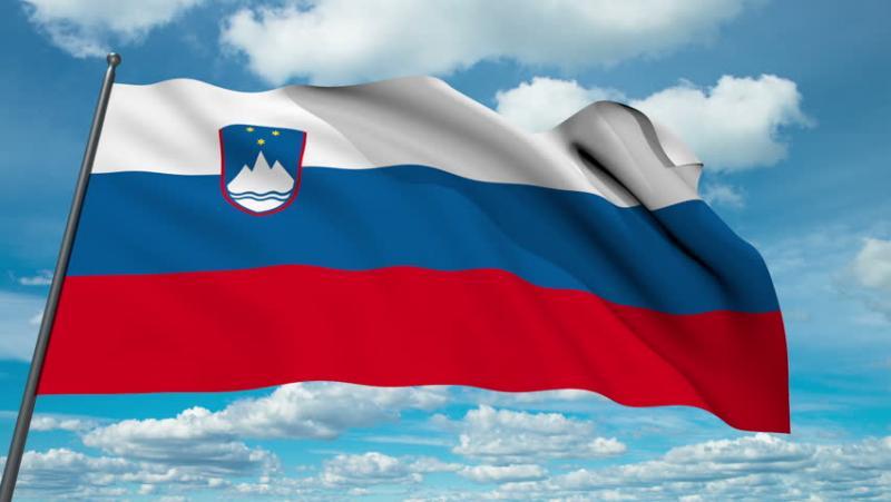 Nergač: »Med tviteraši, ki ob svoje ime prilepijo slovensko zastavo, je nesorazmerno veliko zahojencev«