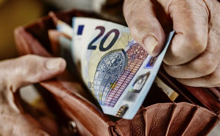 Denar EURO denarnica