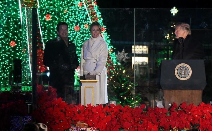 Božično drevo Donald in Melania Trump  Vir:Pixsell