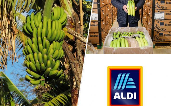 Ekvador, banane, Aldi