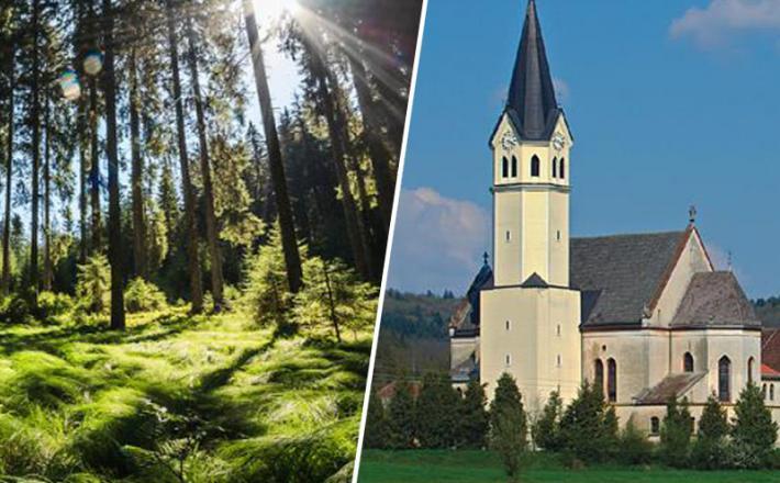 Gozdovi in cerkev St.Kanziana