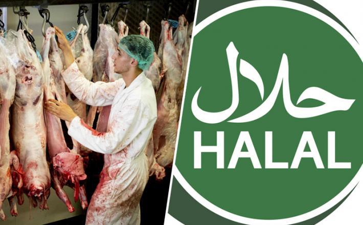 Halal - svet in Slovenija