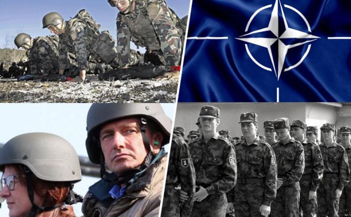 Slovenska vojska  in Nato