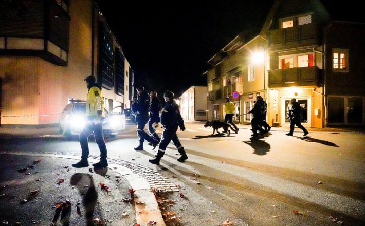 Norveška policija Vir: RT, Twitter