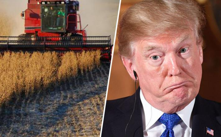 Carine in kmetje / ZDA