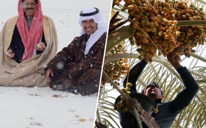 Savdska Arabija med hudo zimo in poletno vročino