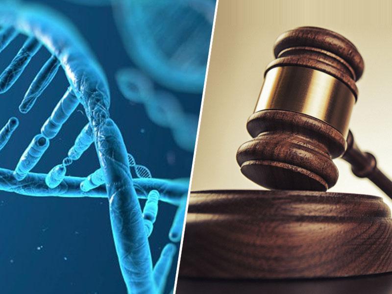 DNK in sodišče EU