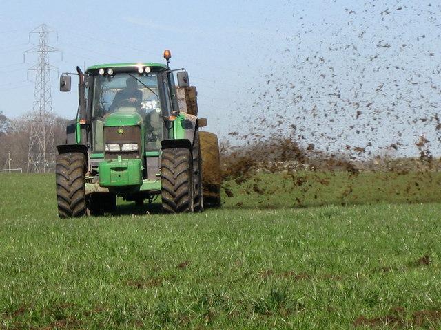 kmet, gojenje