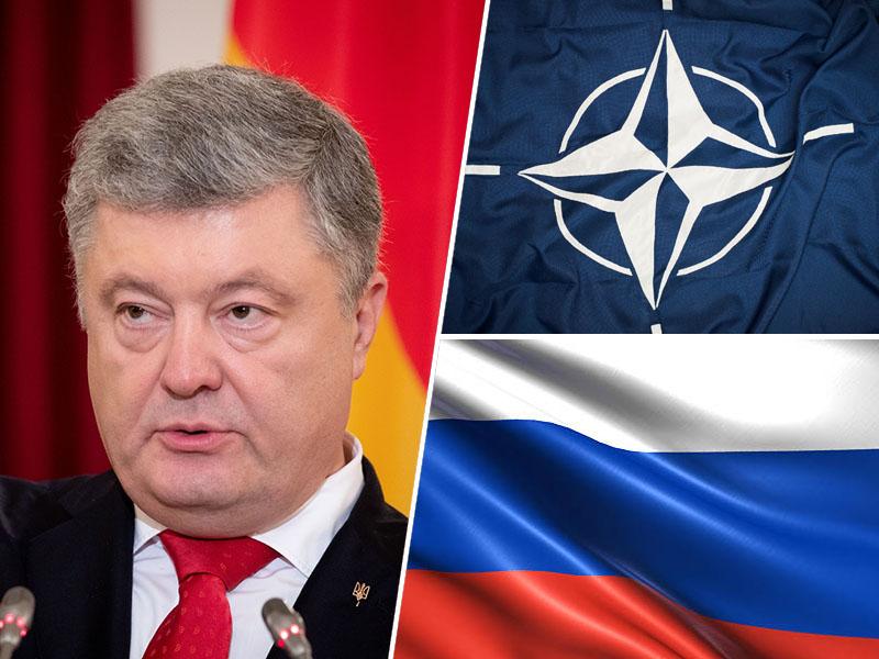 Petro Porošenko, NATO, Rusija