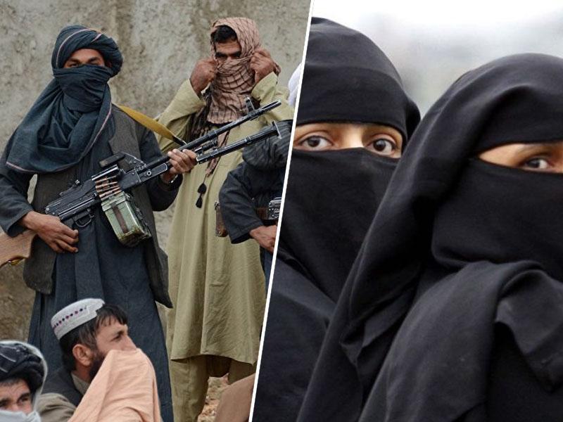 talibani / burke