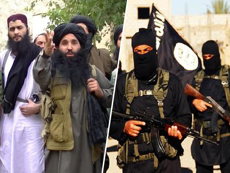 Talibanski borci in ISIS borci