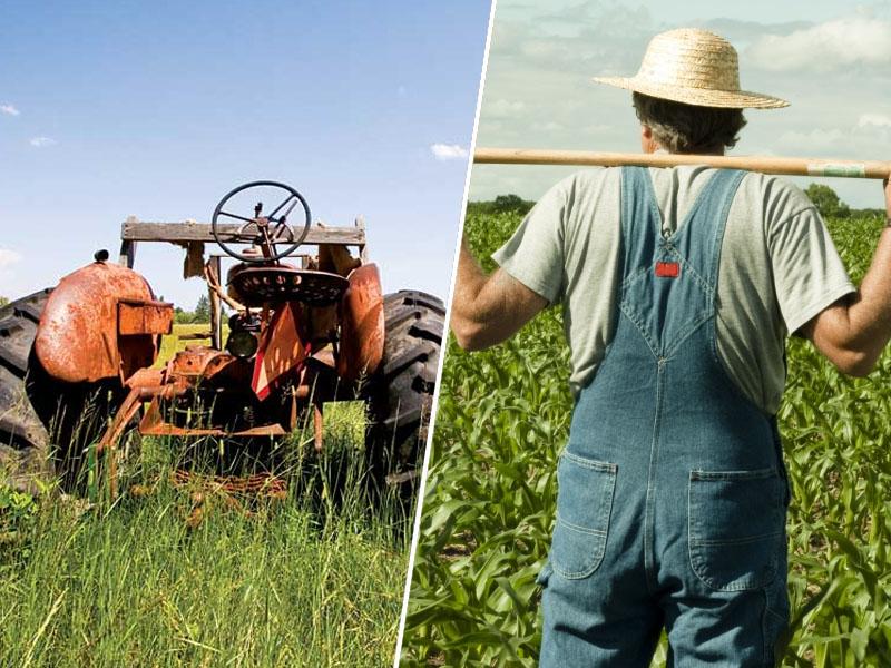 Traktor in kmet
