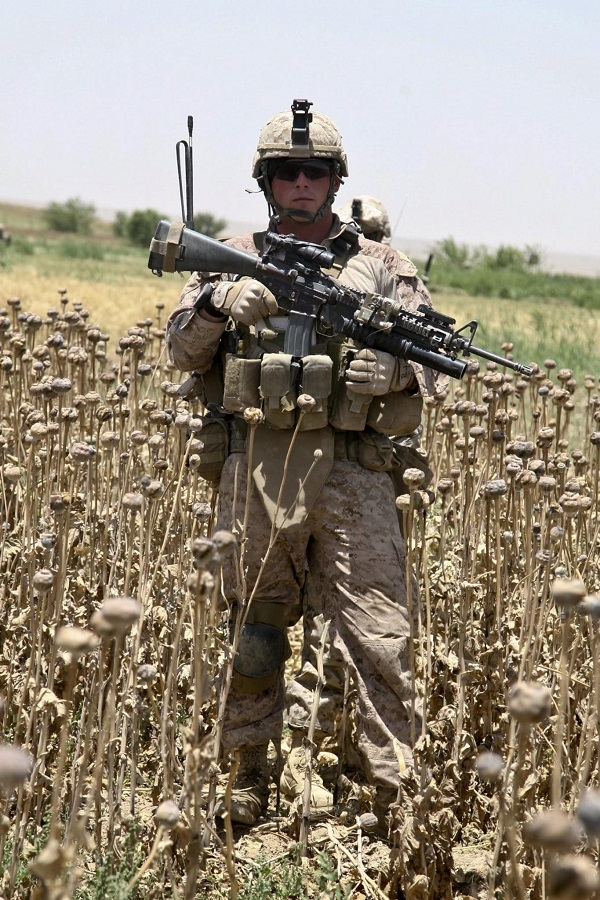 Vojak v polju maka